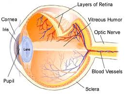 eye-diagram